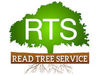 Read Tree Service Retina Logo